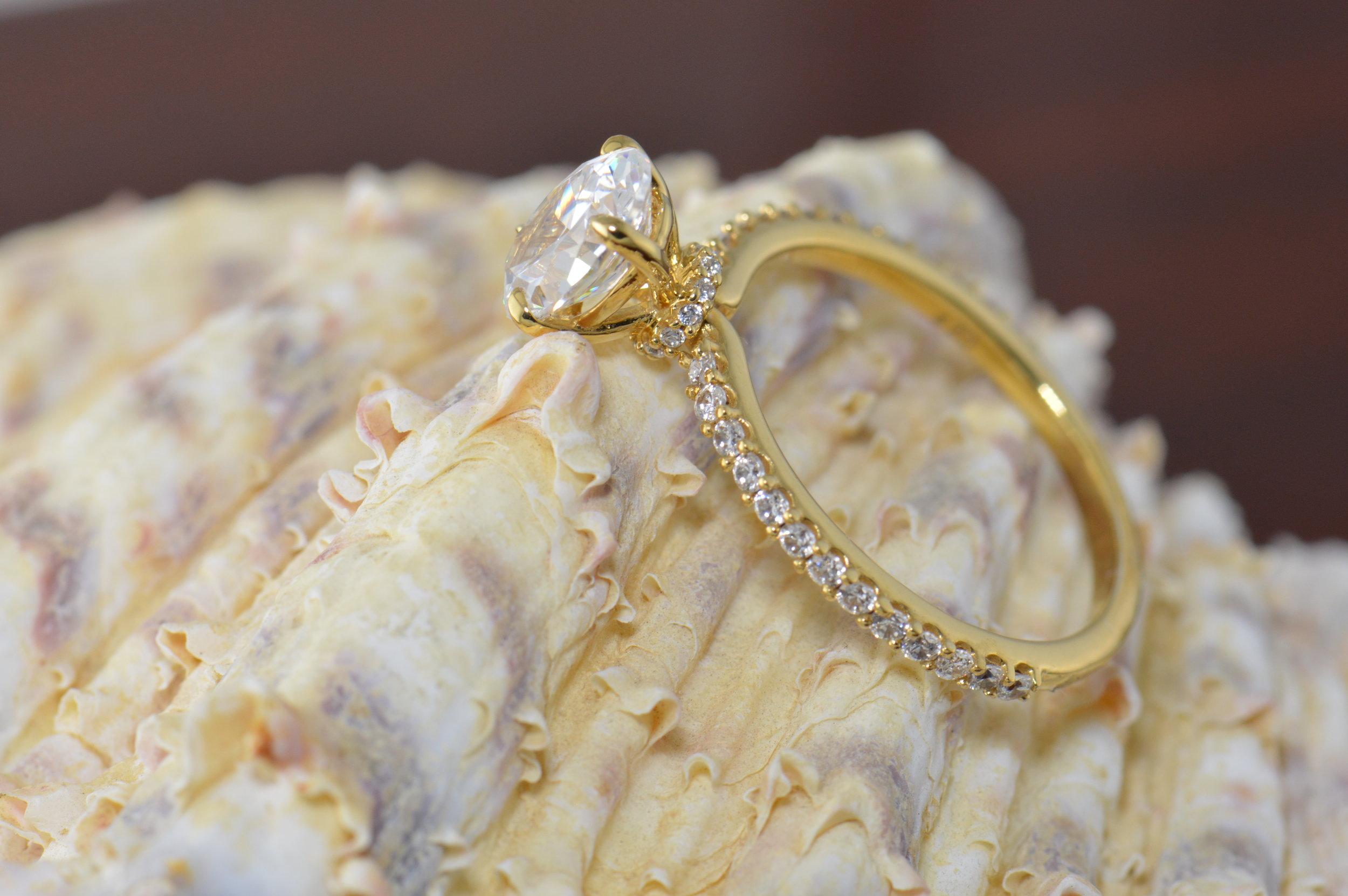 darvier-halo-belt-engagement-ring.JPG