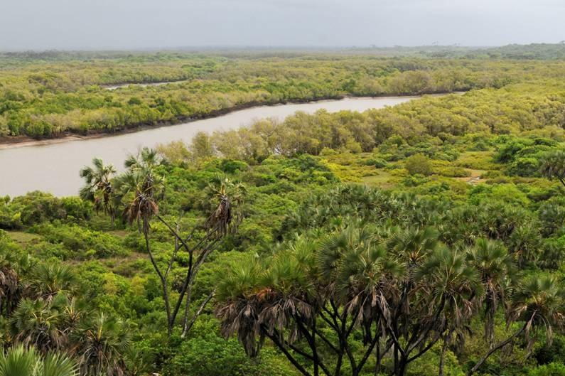 The-Tana-River-C.S.-Owen.jpg
