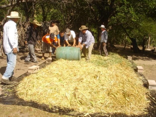 Technical-Assistance-Honduras-01.jpg