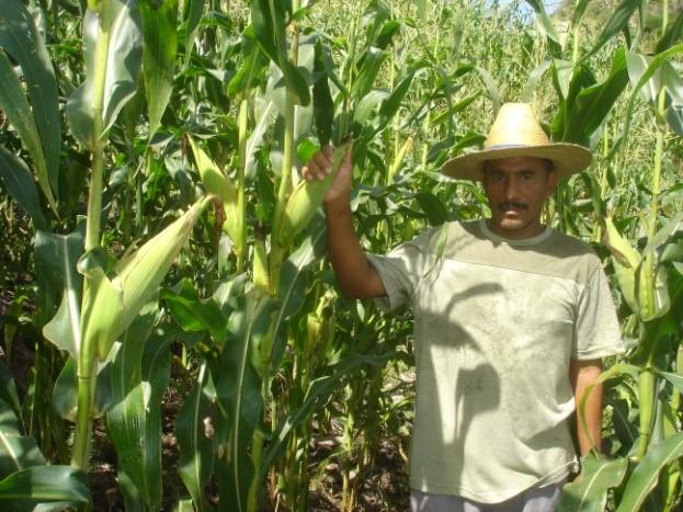 Technical-Assistance-Honduras-02.jpg