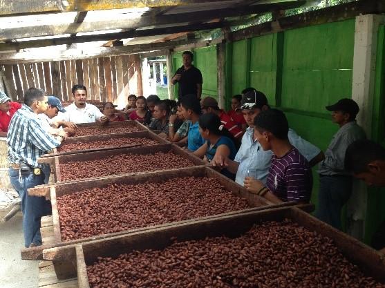 Business-Strenghtening-Honduras-02.jpg