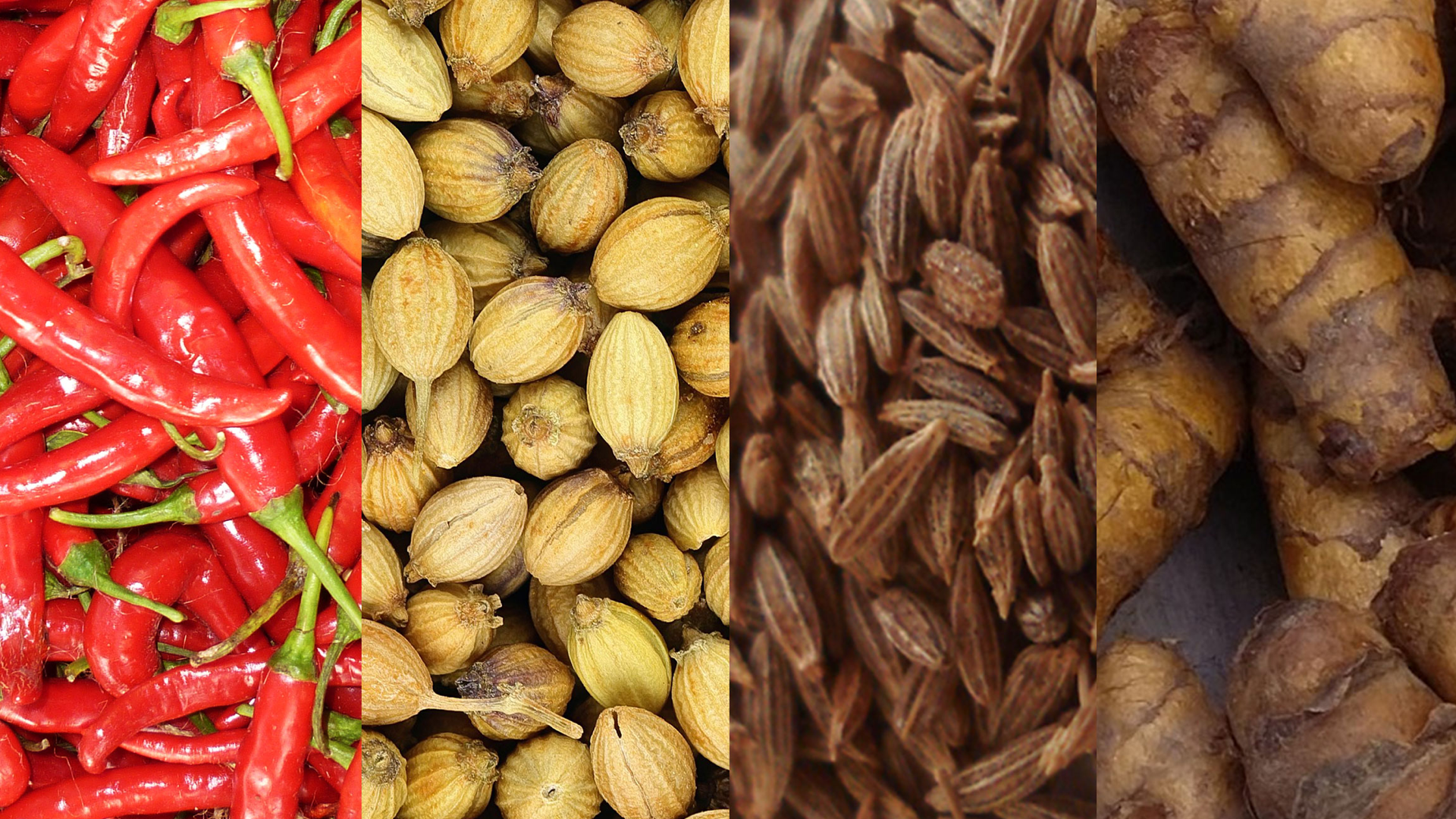 SAN_spices-1920x1080.png