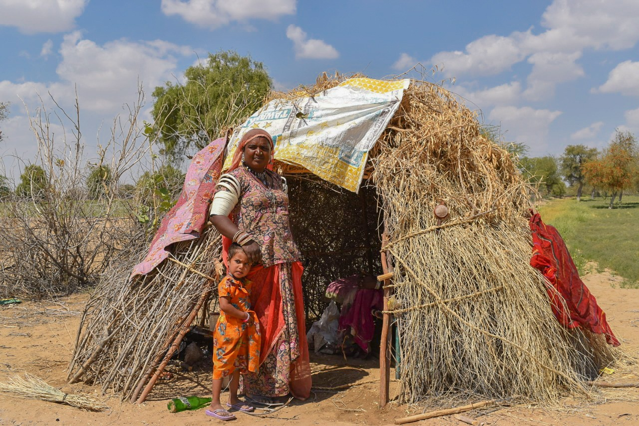 In Rajasthan, harvest season starts in February and runs through to April. Most of population of this region depends on agriculture to make a living.