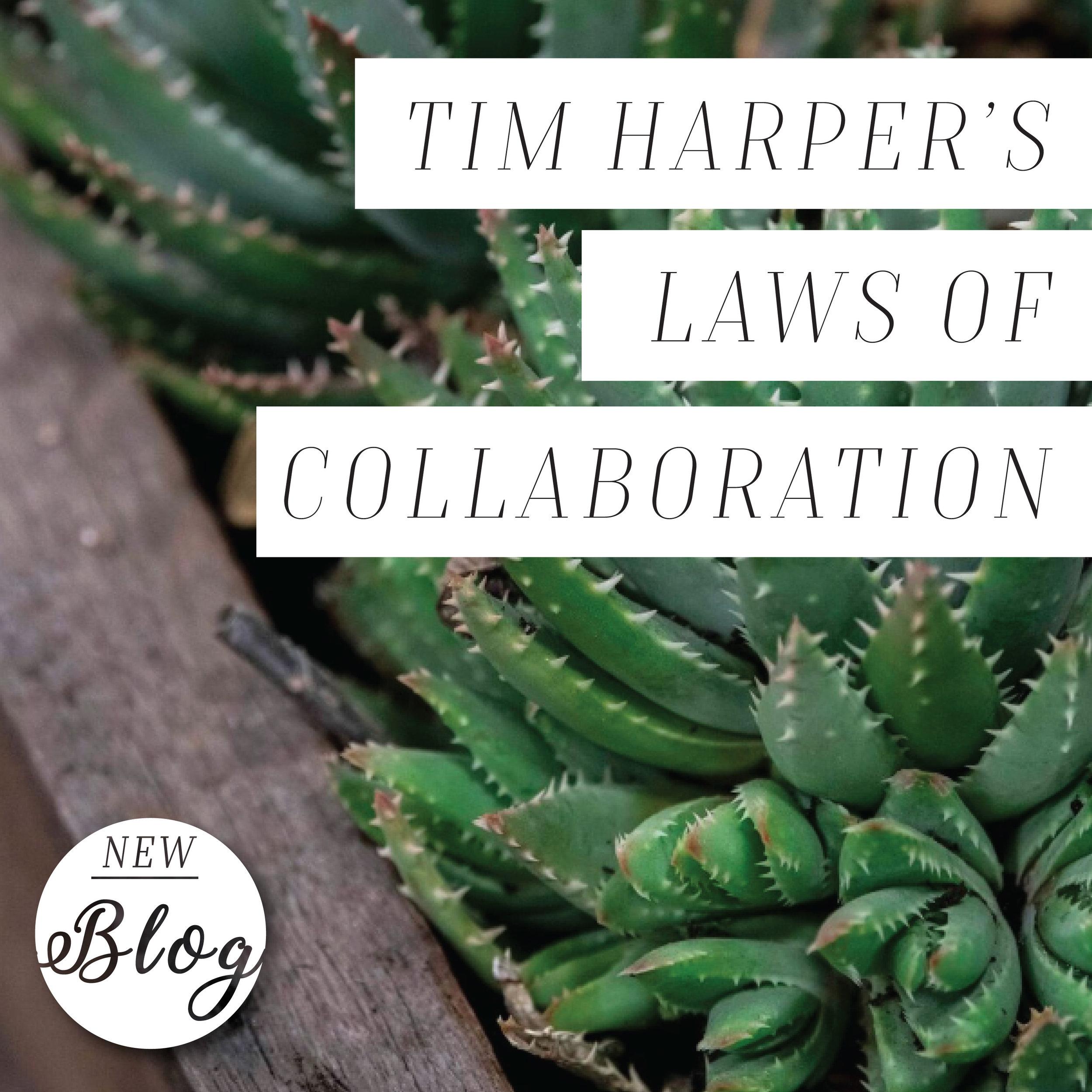 Tim Harper Laws 1.jpg