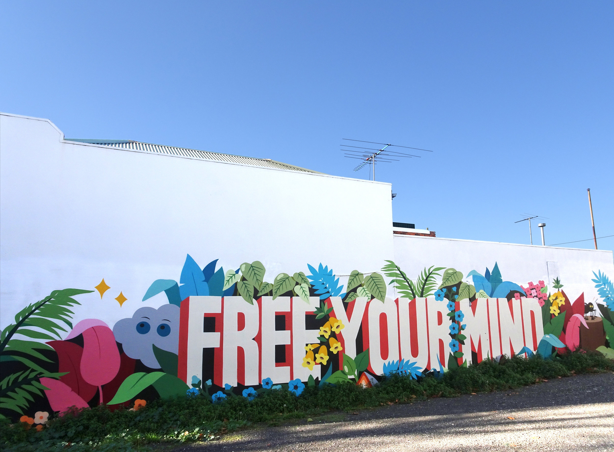 Photo by Lou Chamberlin. Mural by DabsMyla,  Free Your Mind,  Carlton, Melbourne, 2018