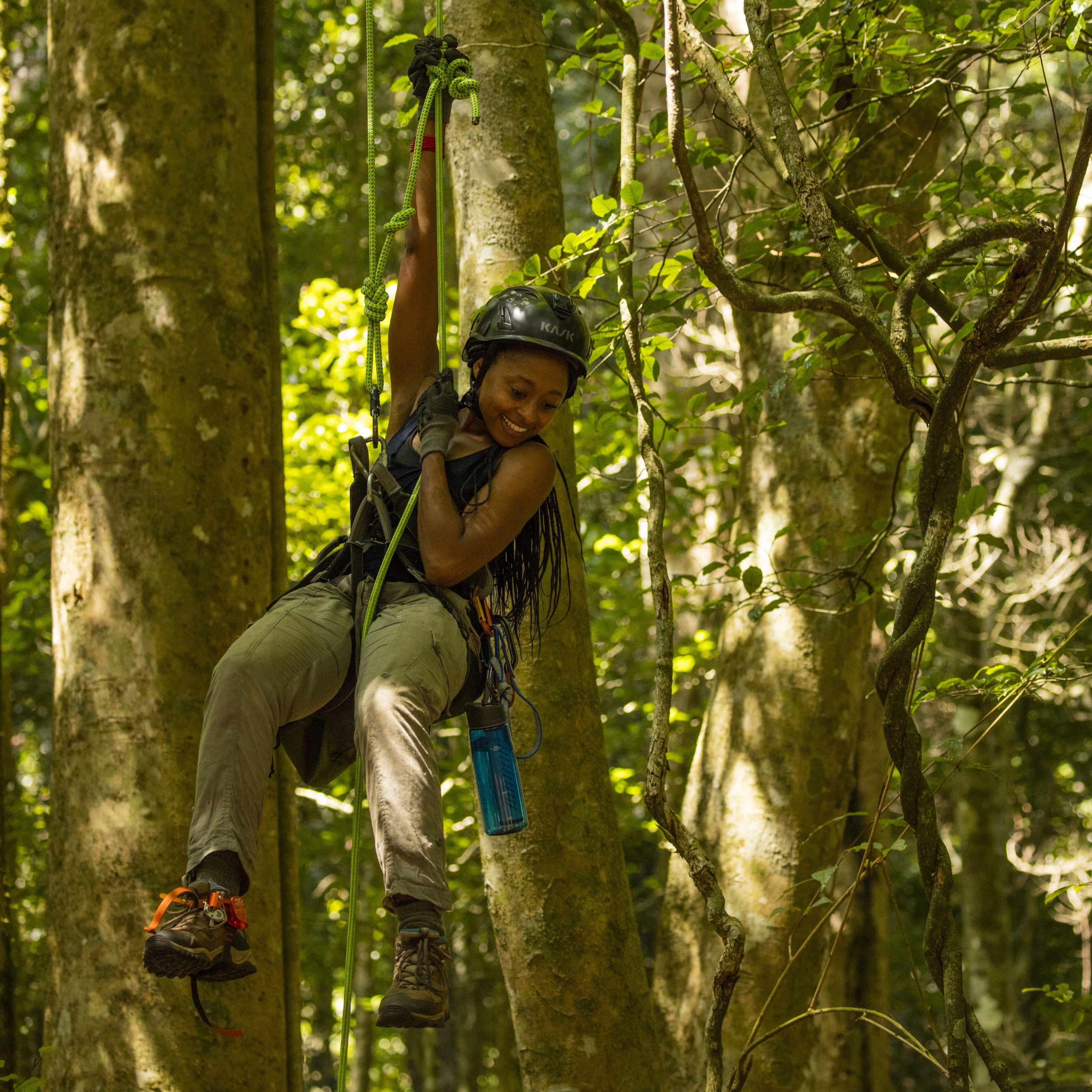 Climbing into the rainforest canopy in Madagascar