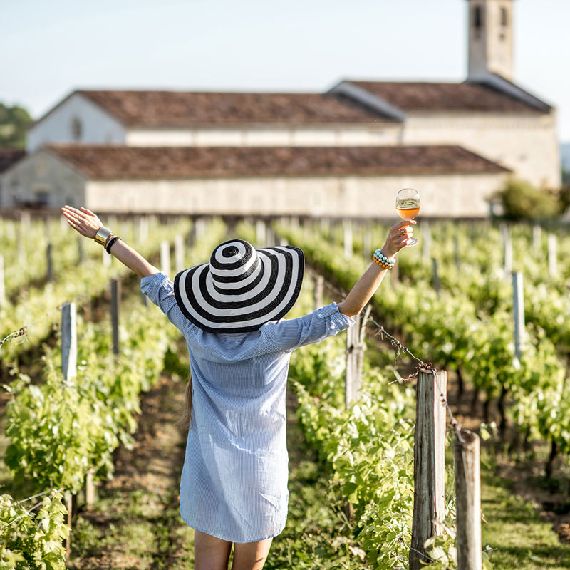 5 Bordeaux Wines You Should Carry in Your VinGardeValise