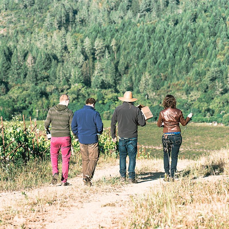 The Donelan Family Vineyards