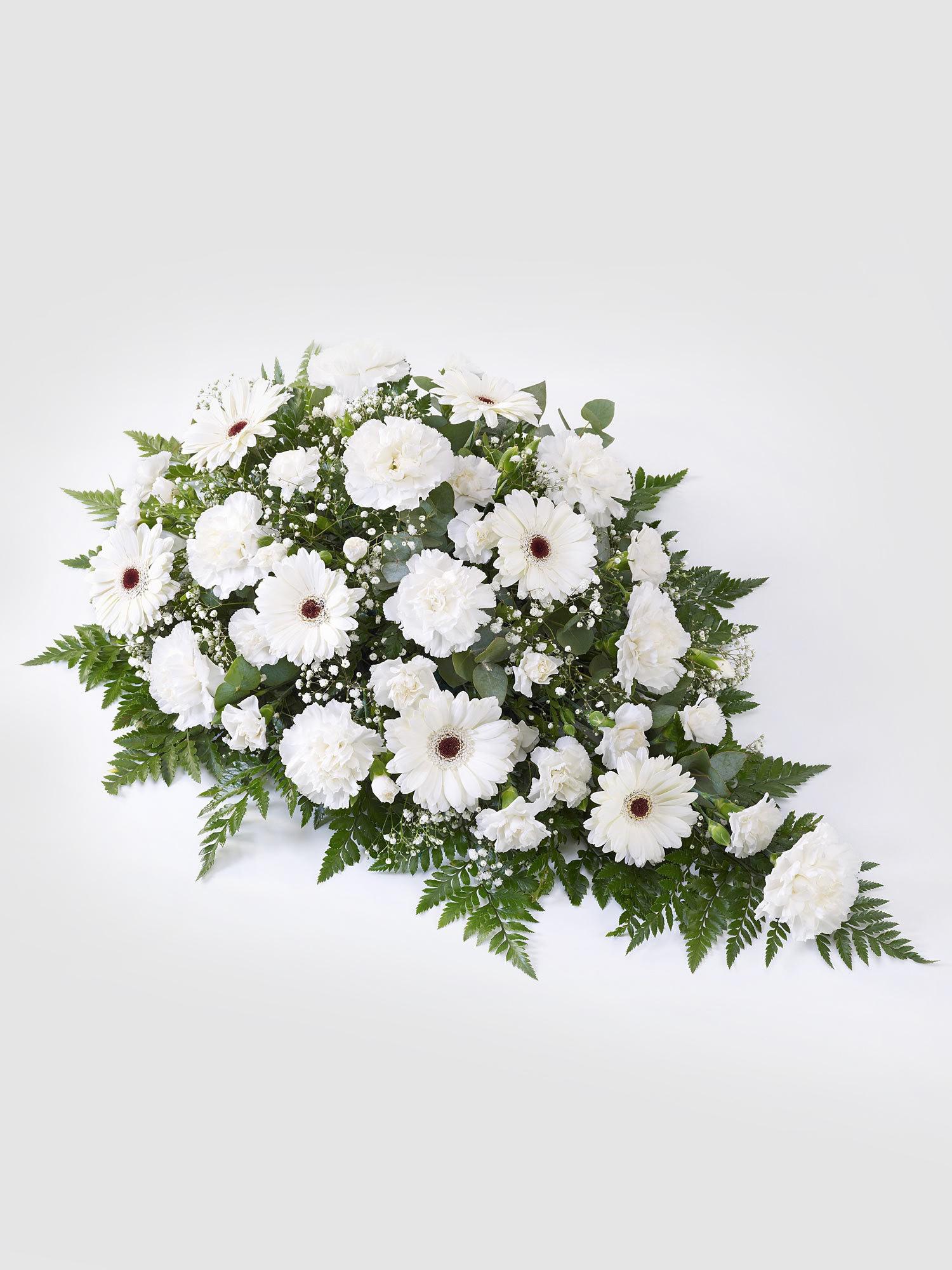 All White Germini & Carnation.jpg
