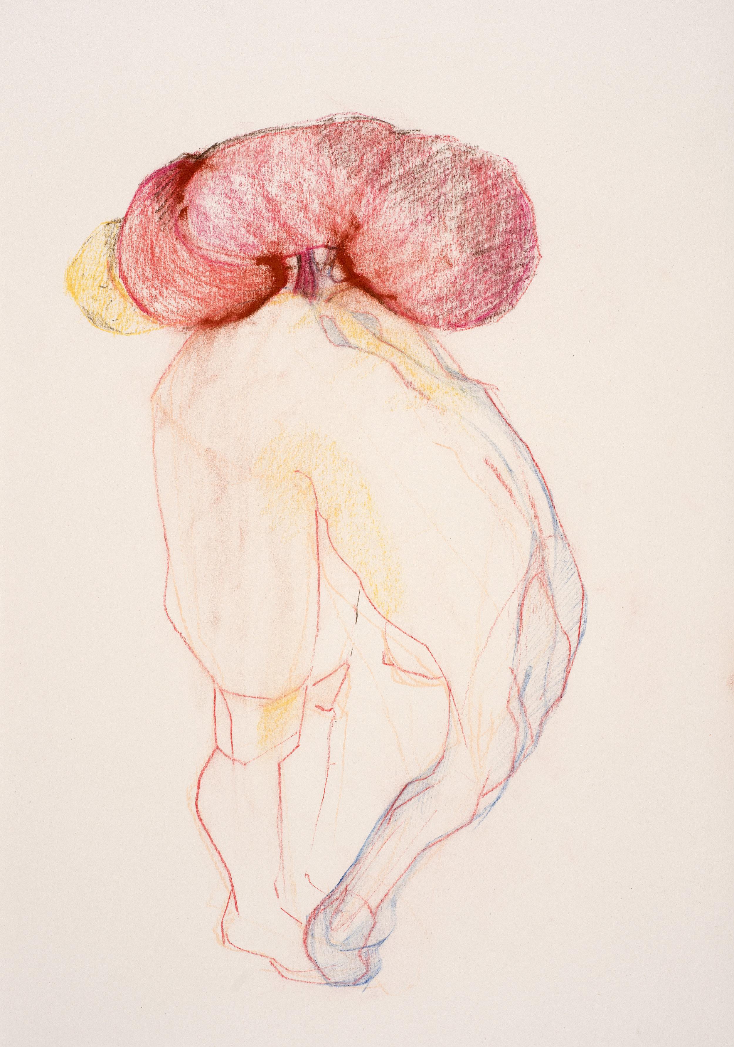 pastel on paper  35 x 49.6cm