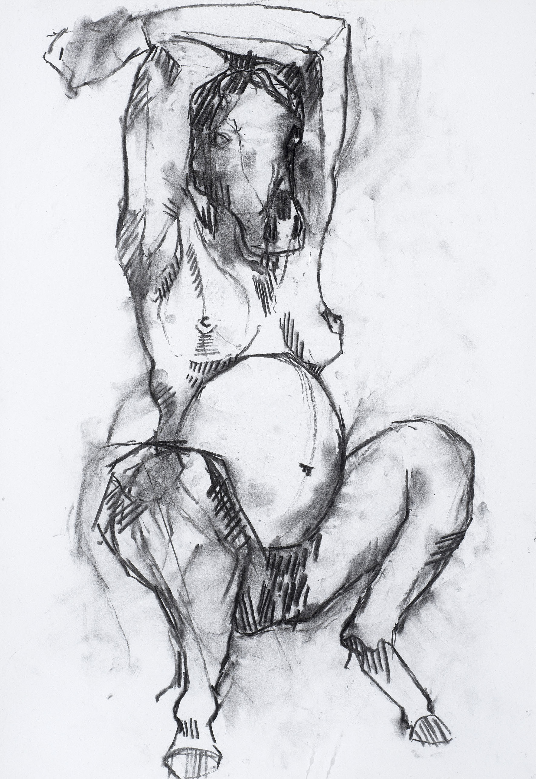 charcoal on paper  28.3 x 40.8cm