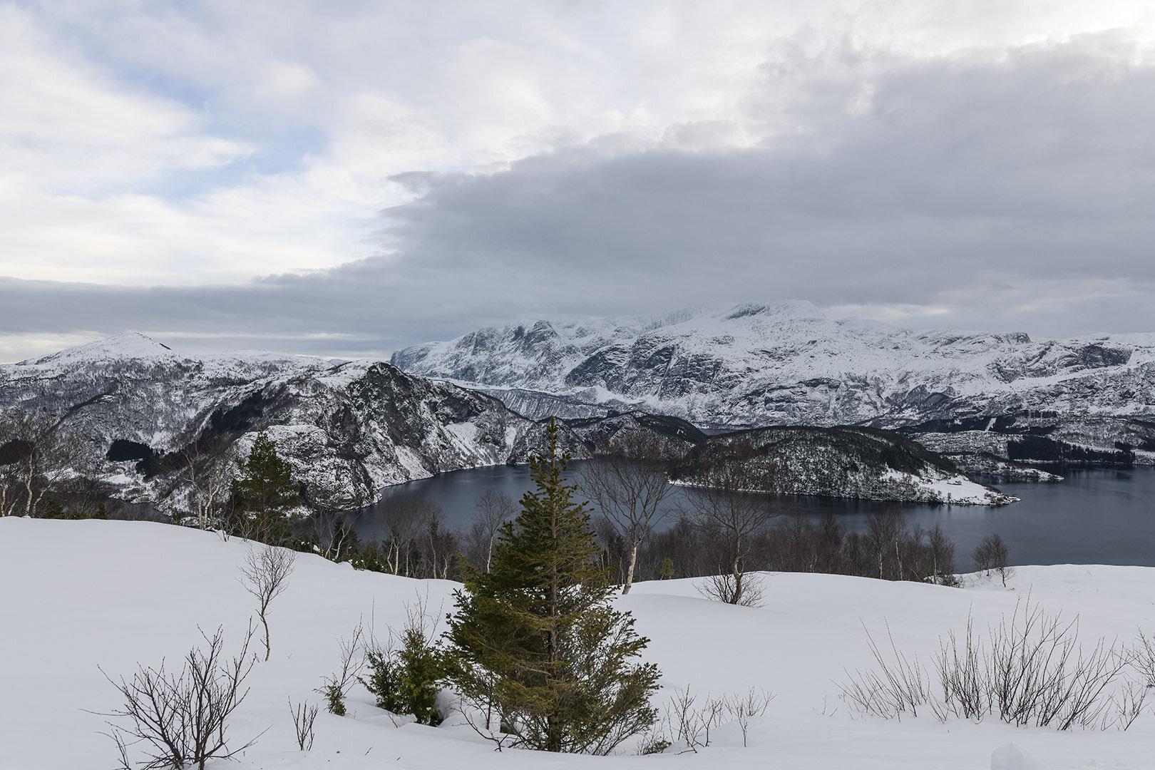 View from Engebøfjellet over an affected part of Førdefjorden.