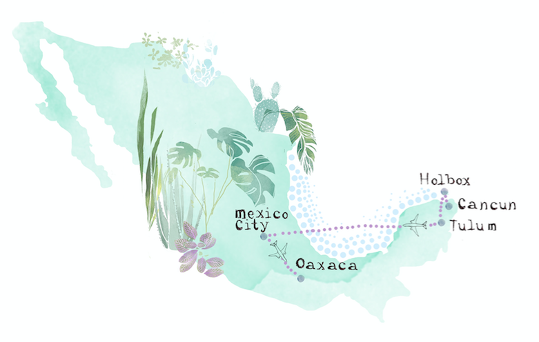 Bryony-Fripp-Illustrator-Mexican-Map.png