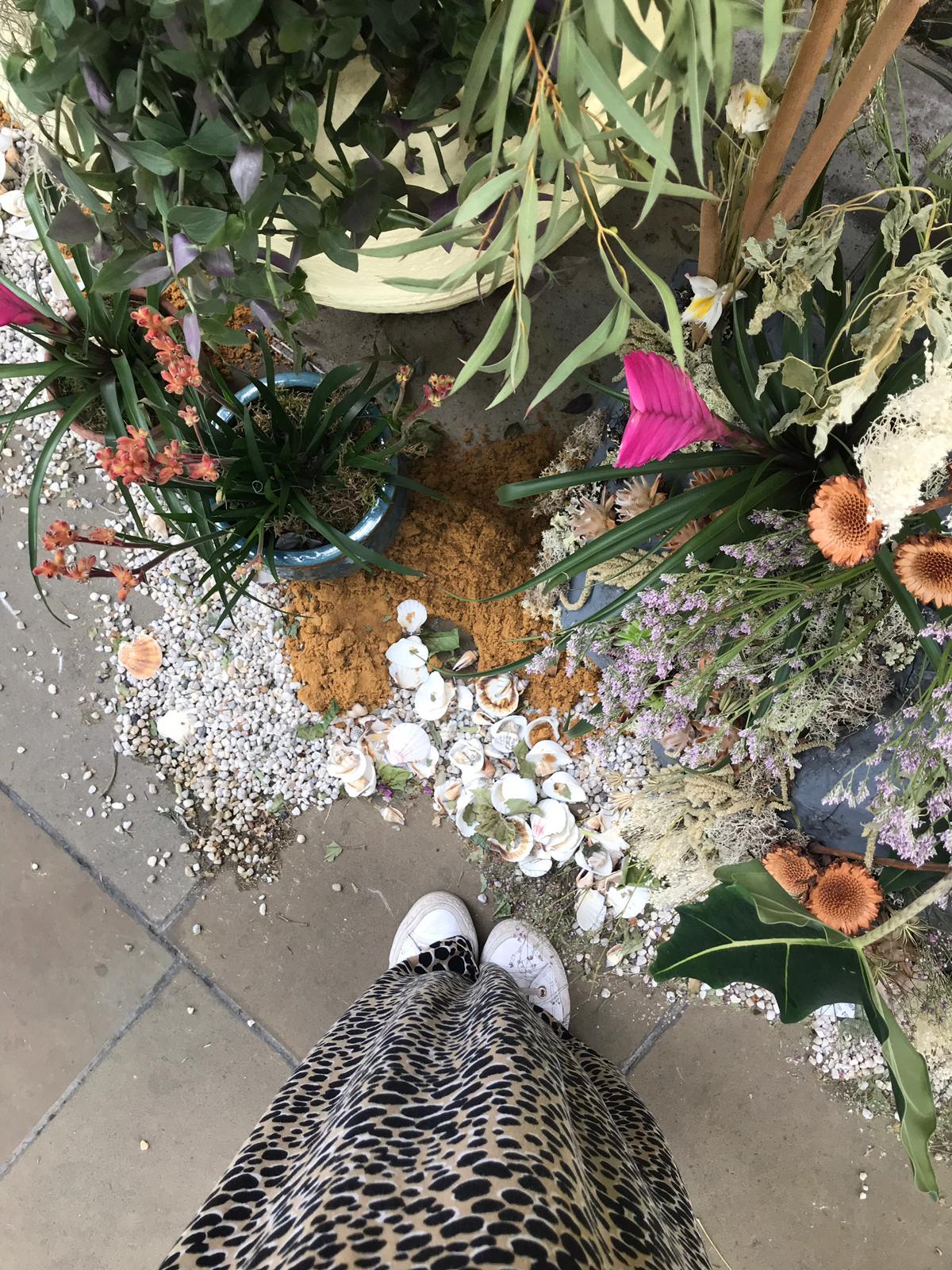 Blog_Culture Corner_Chelsea Physic Garden_1.jpg