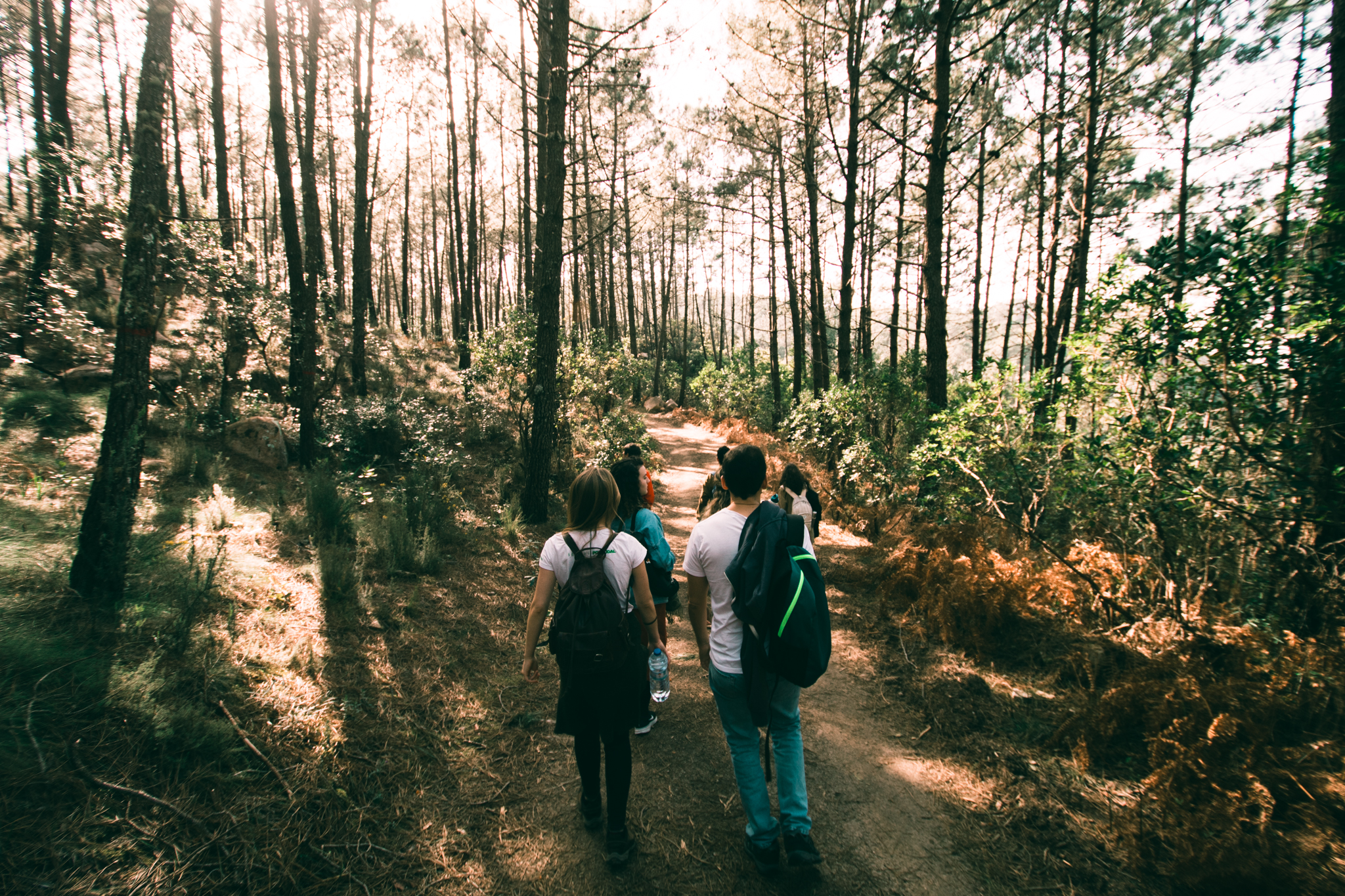 DISCOVER SINTRA: INTO THE WILD   Sintra Cascais Natural Park FROM 45,00€  If you're interested in exploring breathtaking landscapes, this is the perfect challenge for you. Come and cross our stunning wild paths through hills and valleys that will certainly leave you inspired.