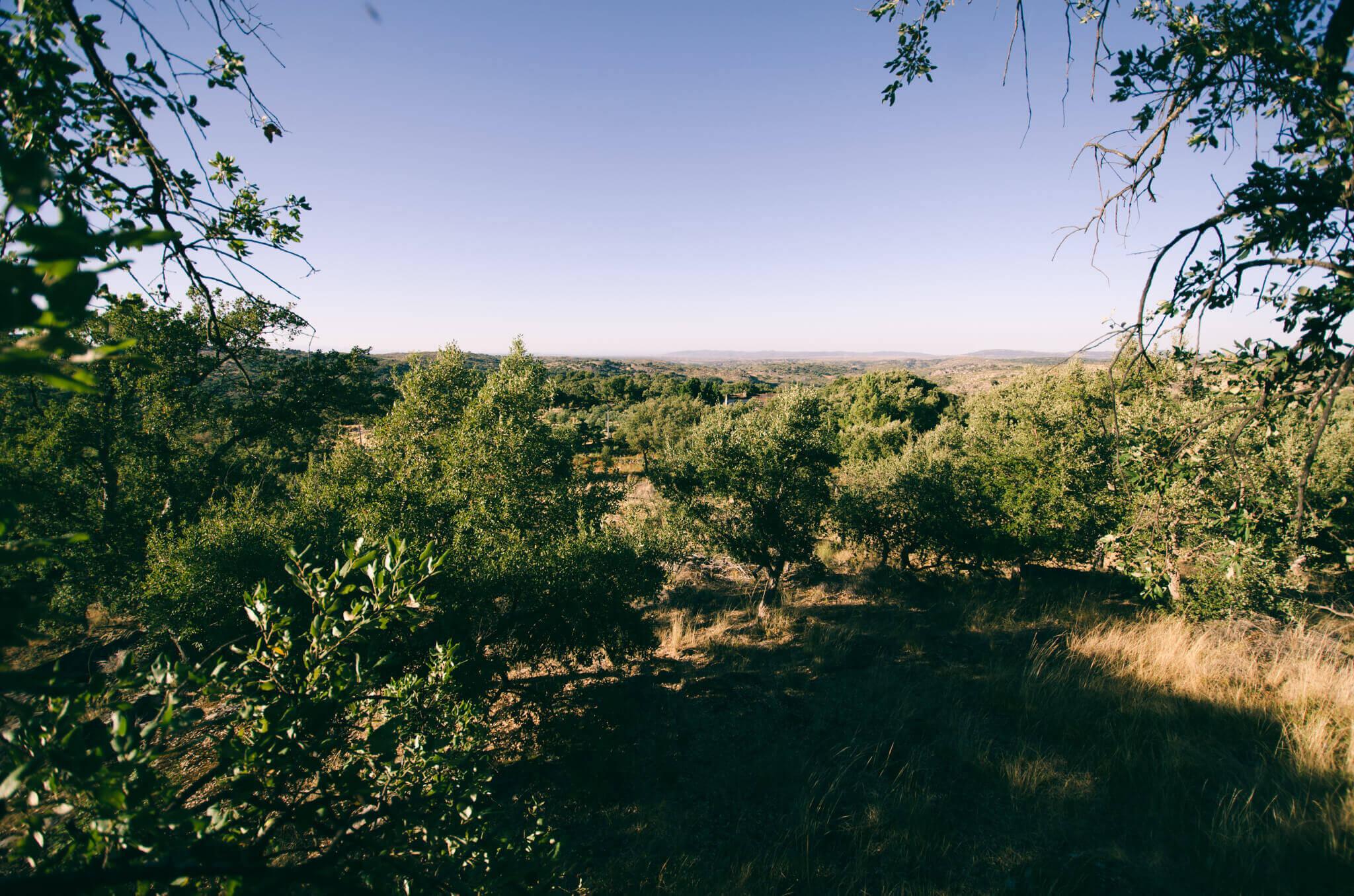 alentejo-landscape-breathe-portugal.jpg