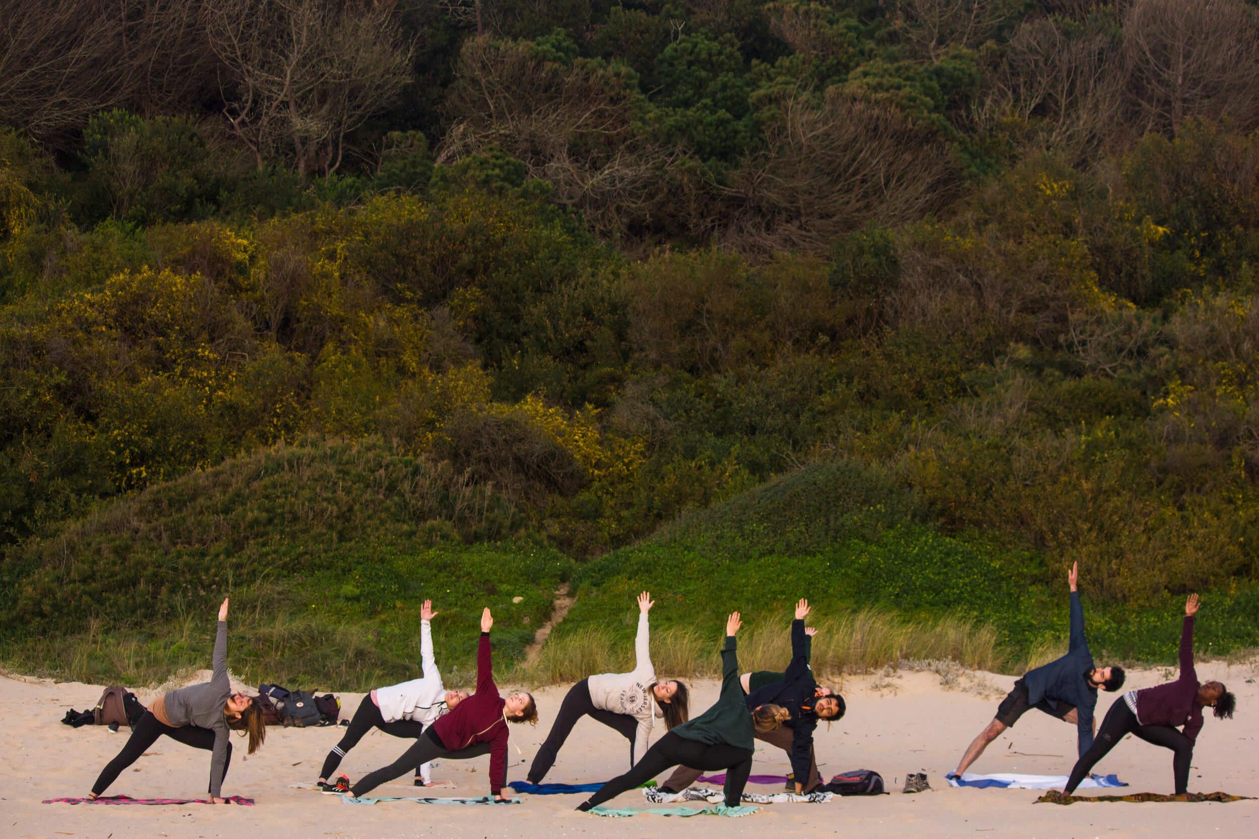 yoga-coastal-forest-breathe-portugal.jpg