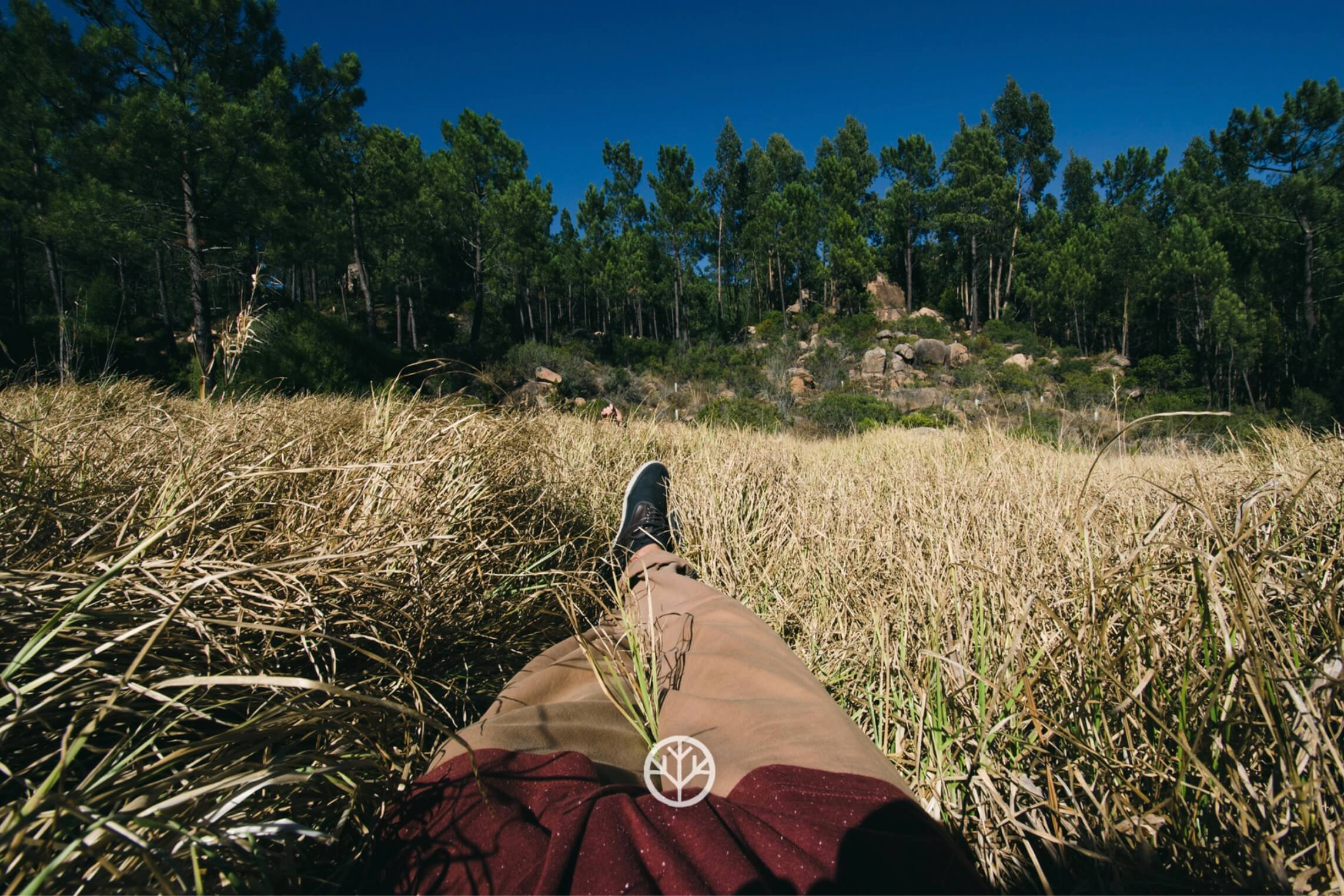 chilling-in-the-forest-breathe-portugal.jpg