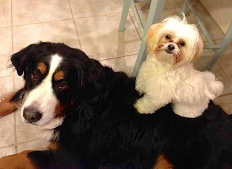 Nicki & Benny