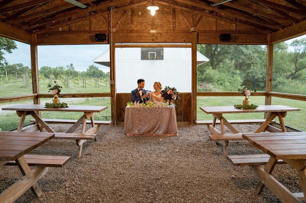 EmmaMales_Indianapolisweddingphotography_vinyardelopement-56.jpg