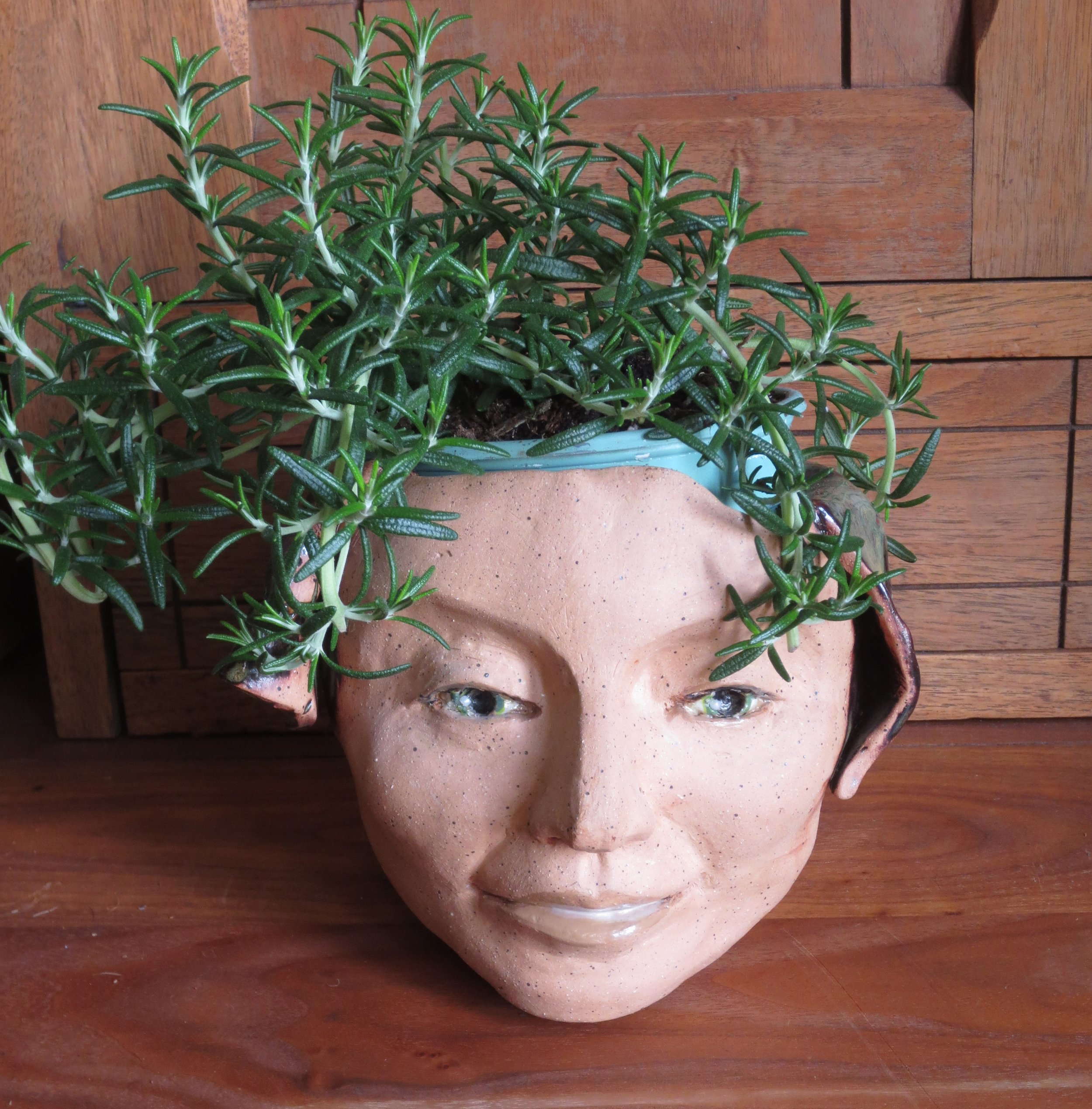 Rosemary in Pottery