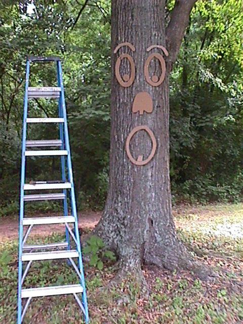 TreeMan Step 2.jpg