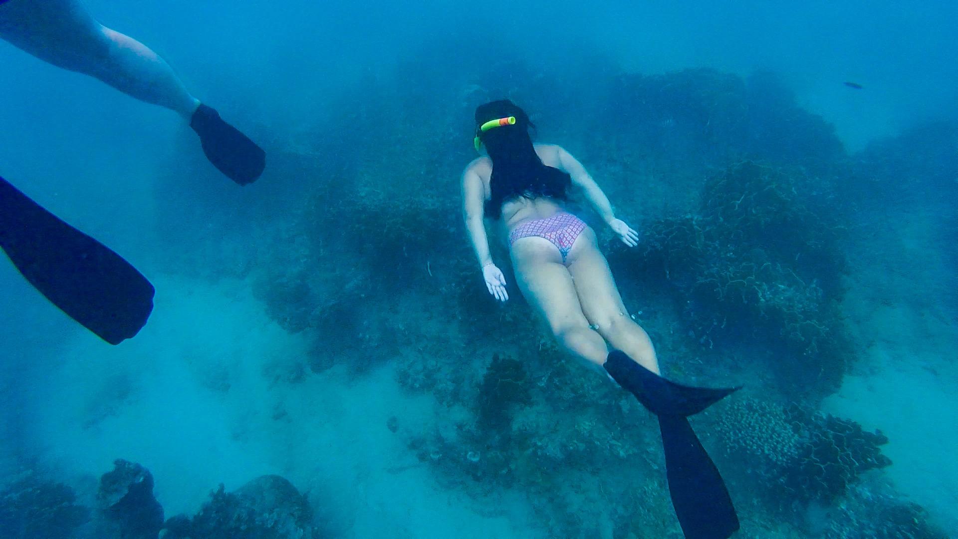 snorkeling barbados.jpg