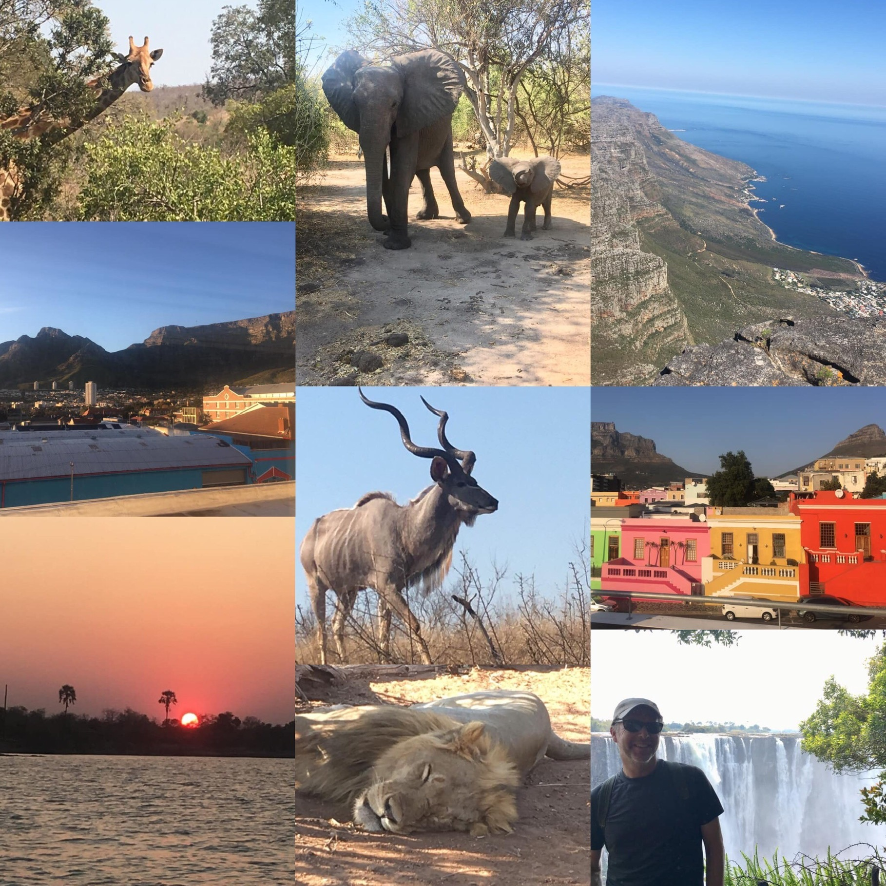 south africa solo - Best Africa travel experience! Three weeks of seeing all South Africa with details planned and assured making time hassle free. Not one glitch with air, hotels, travel, etc - I saw tons of animals while enjoying local culture at each stop. Tom K, St. Paul MN. Traveled Sept. 2019
