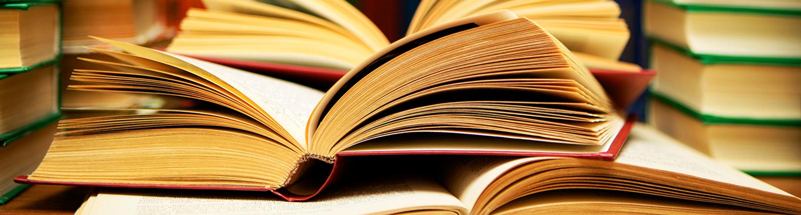 The-Scholars-Choice-Books.jpg