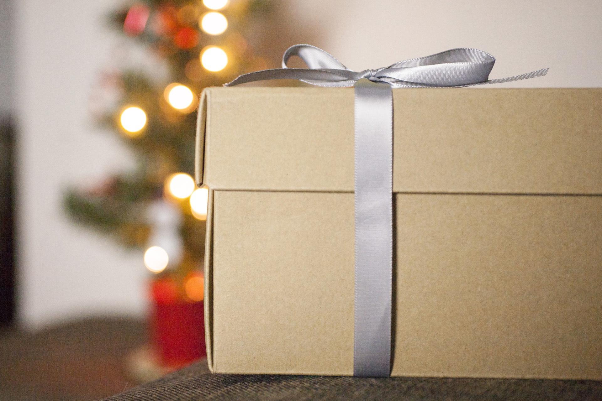holiday_christmas_IMG_0550.jpg