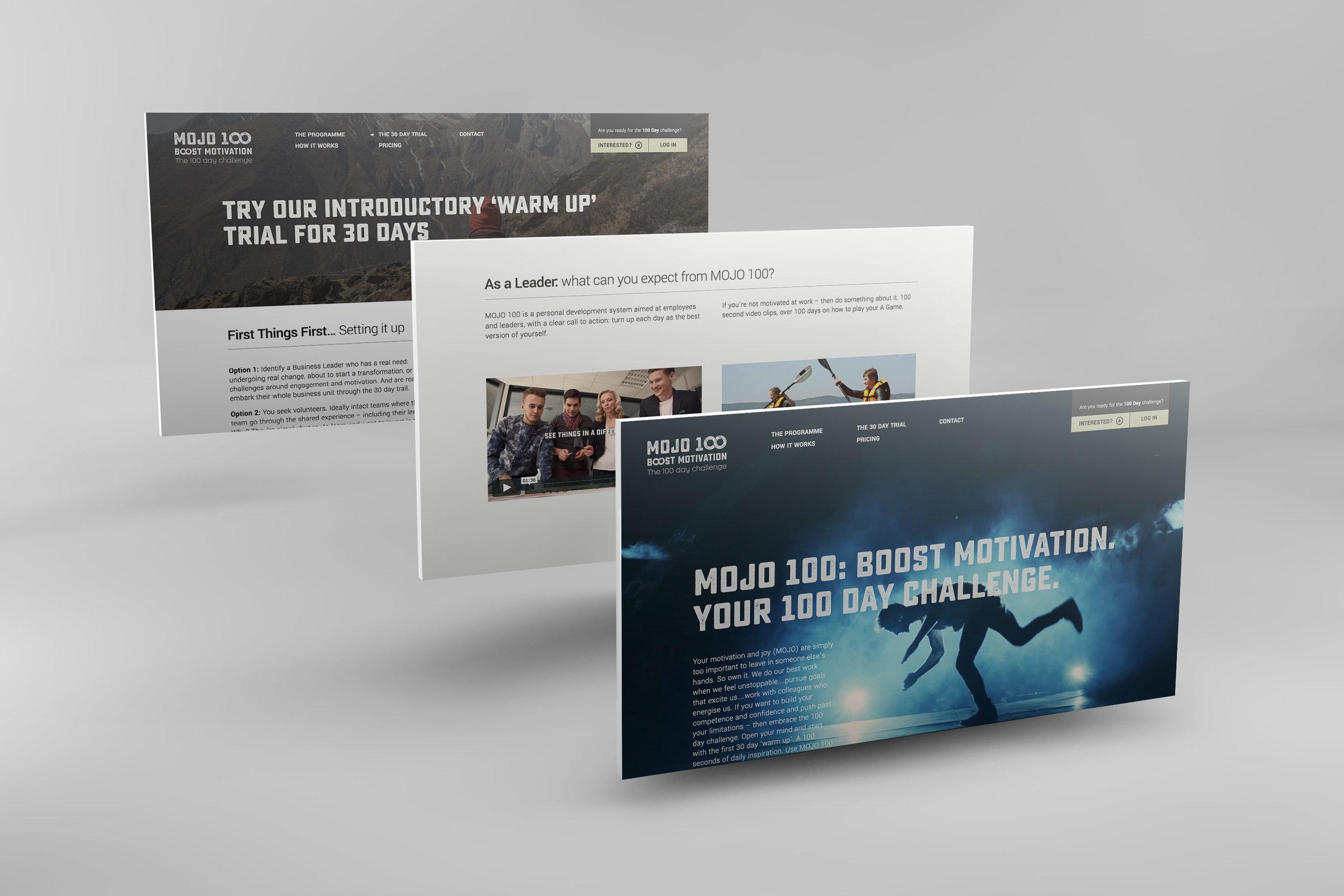 Mojo 100 Brochureware Detail Views