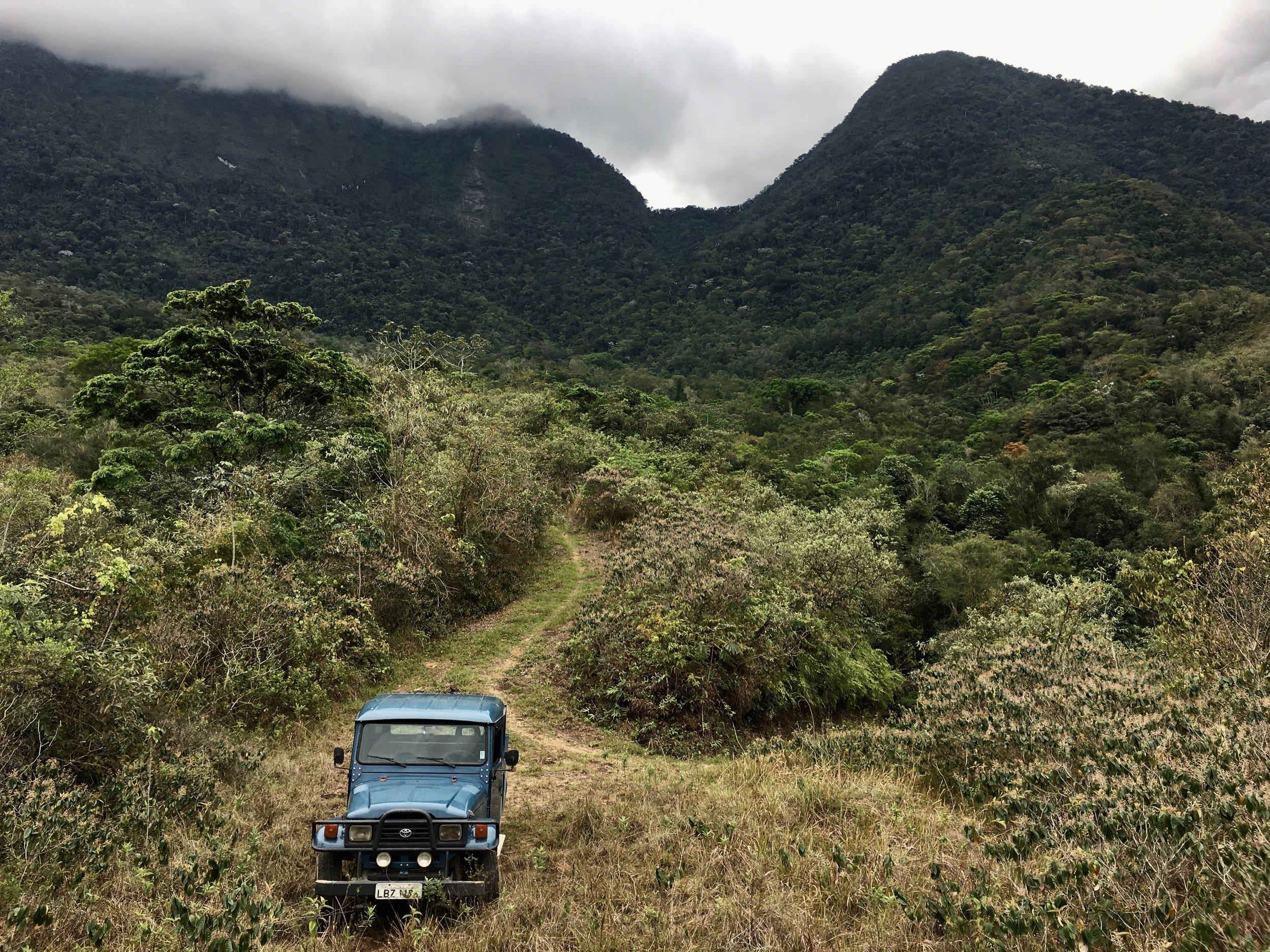 Reserva Ecológica de Guapiaçu (REGUA) in the Mata Atlântica in Brazil. Photo by Scott Stone