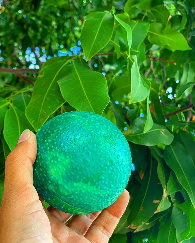 We re-created the famous Laraha Orange for @landhuischobolobo🍊 •  This one of a kind orange only grows on Curacao. With the peals of the Laraha's the worlds famous Blue Curacao Liqueur is made🍹