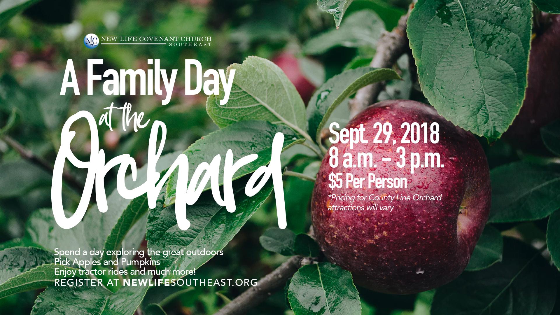 FinalOrchard Family Day Flyer (Web).jpg
