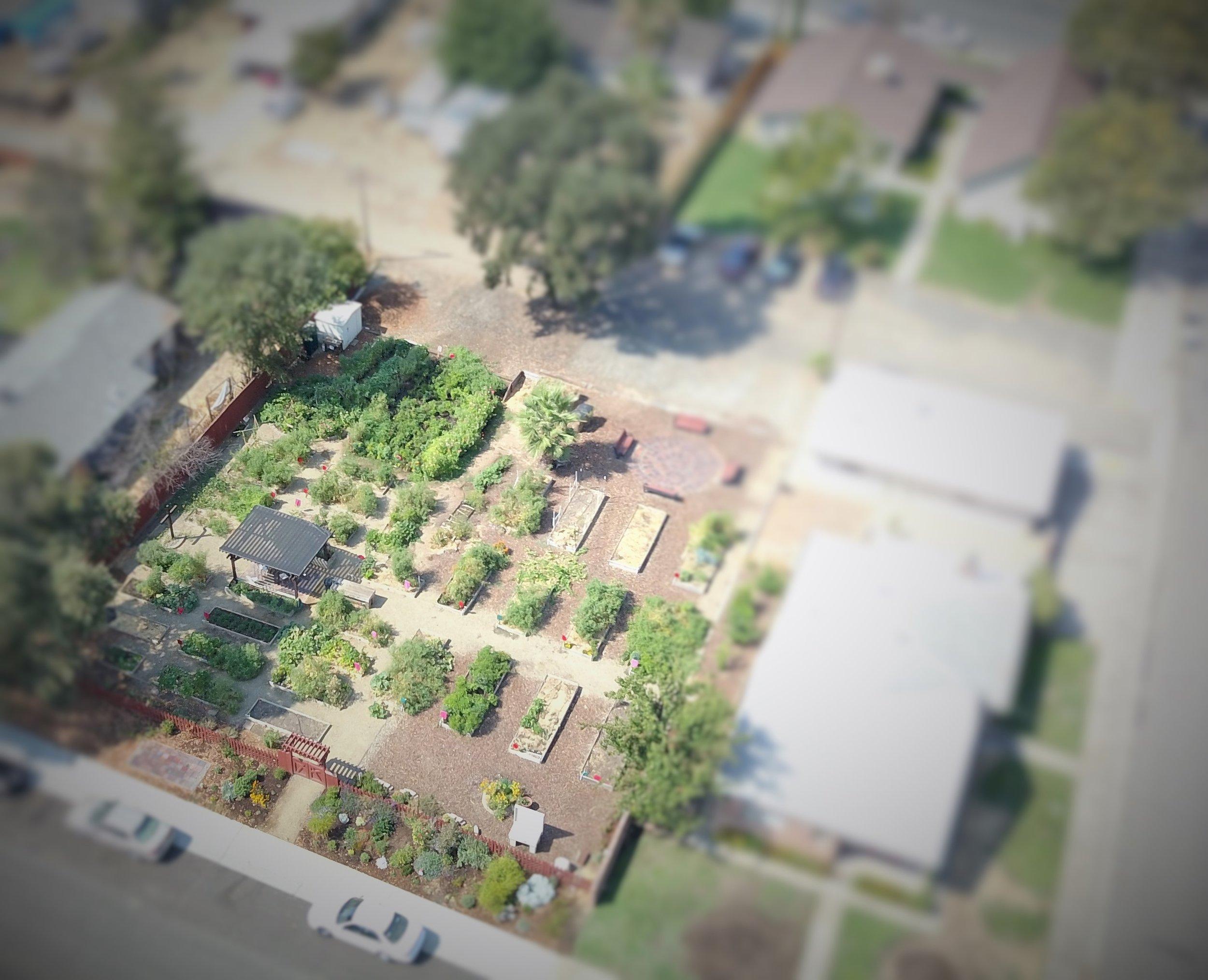 St. James Garden Aerial View.JPG
