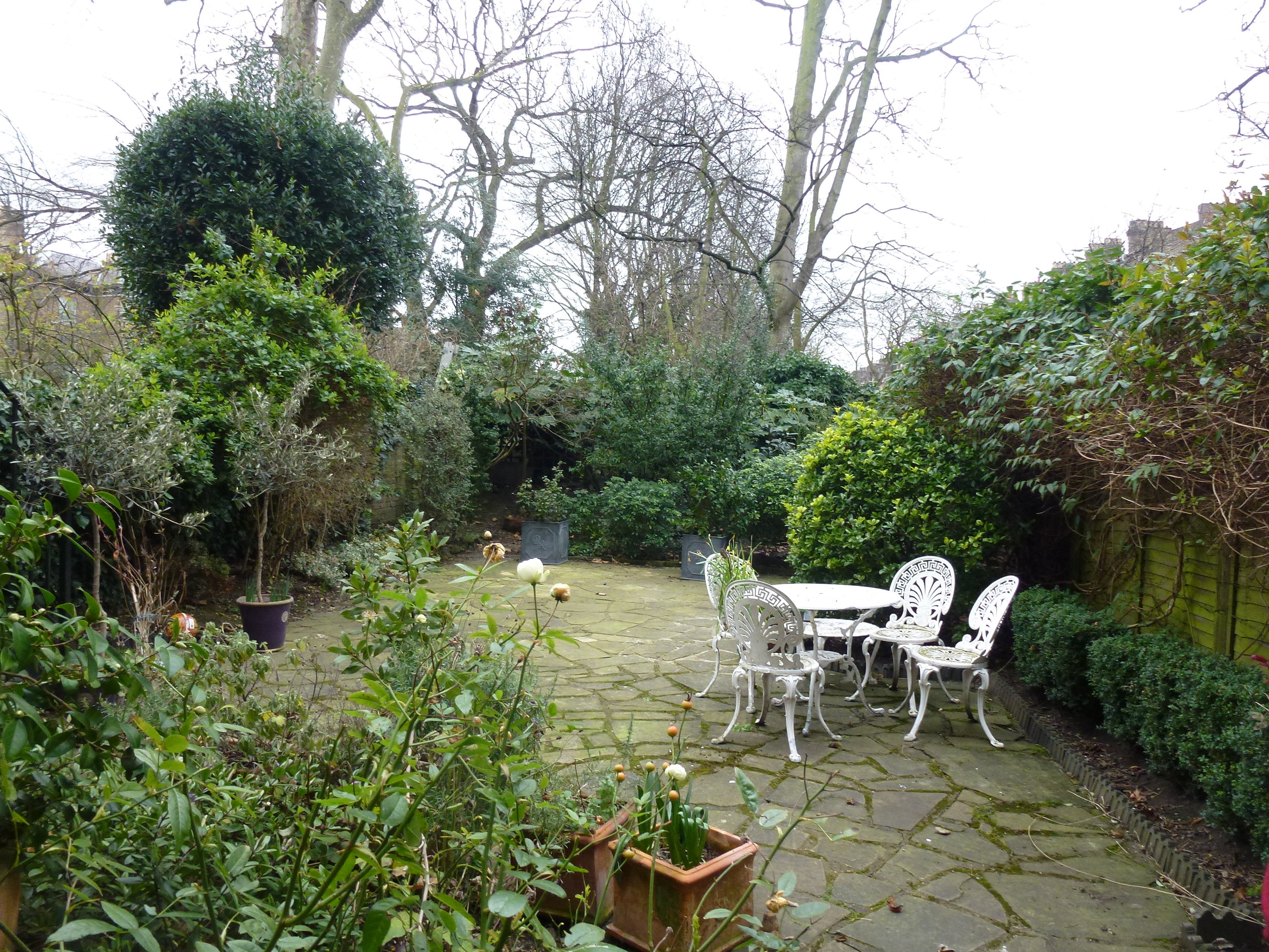 Garden before works