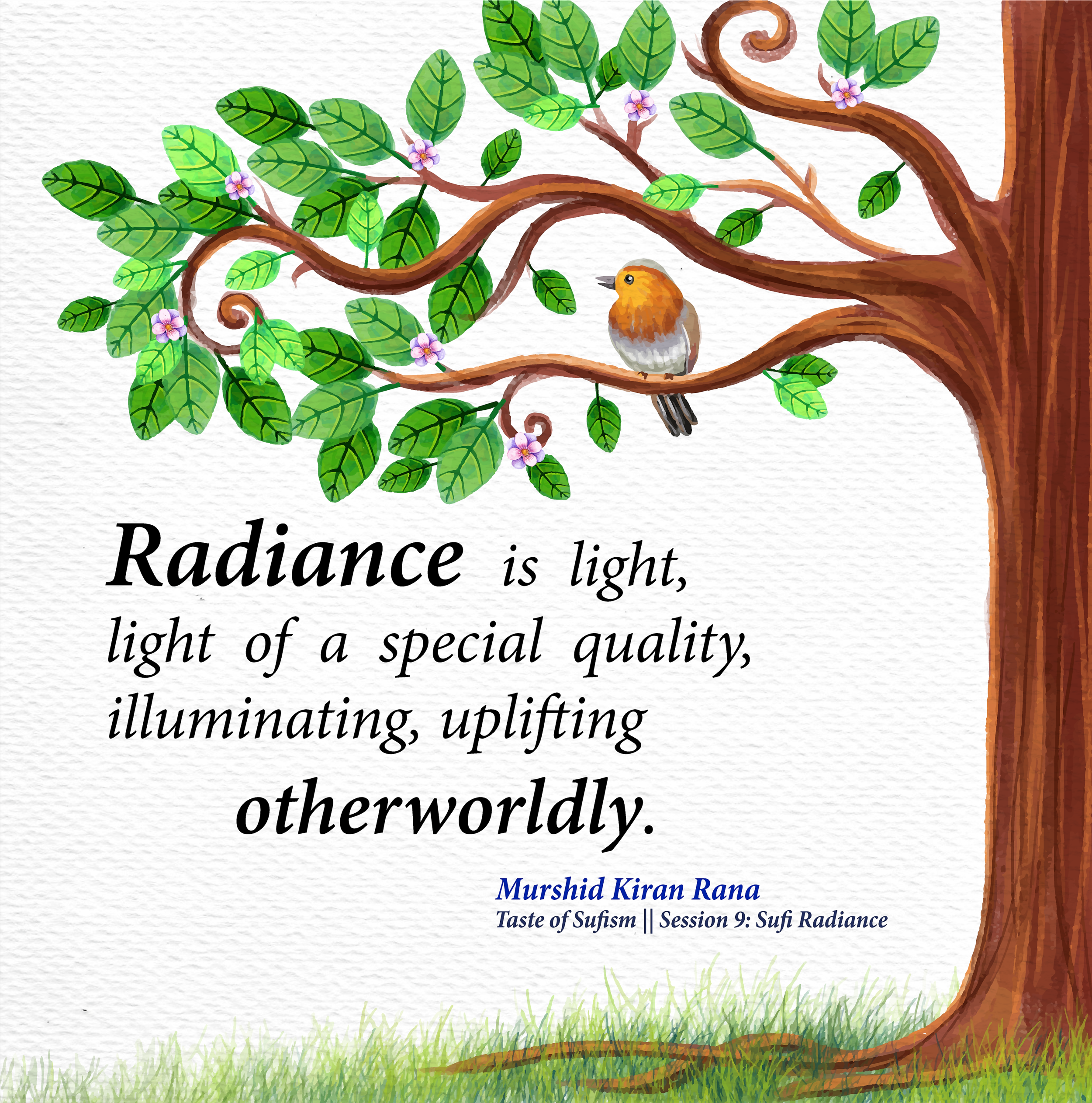 Quote from Sufi Radiance.png