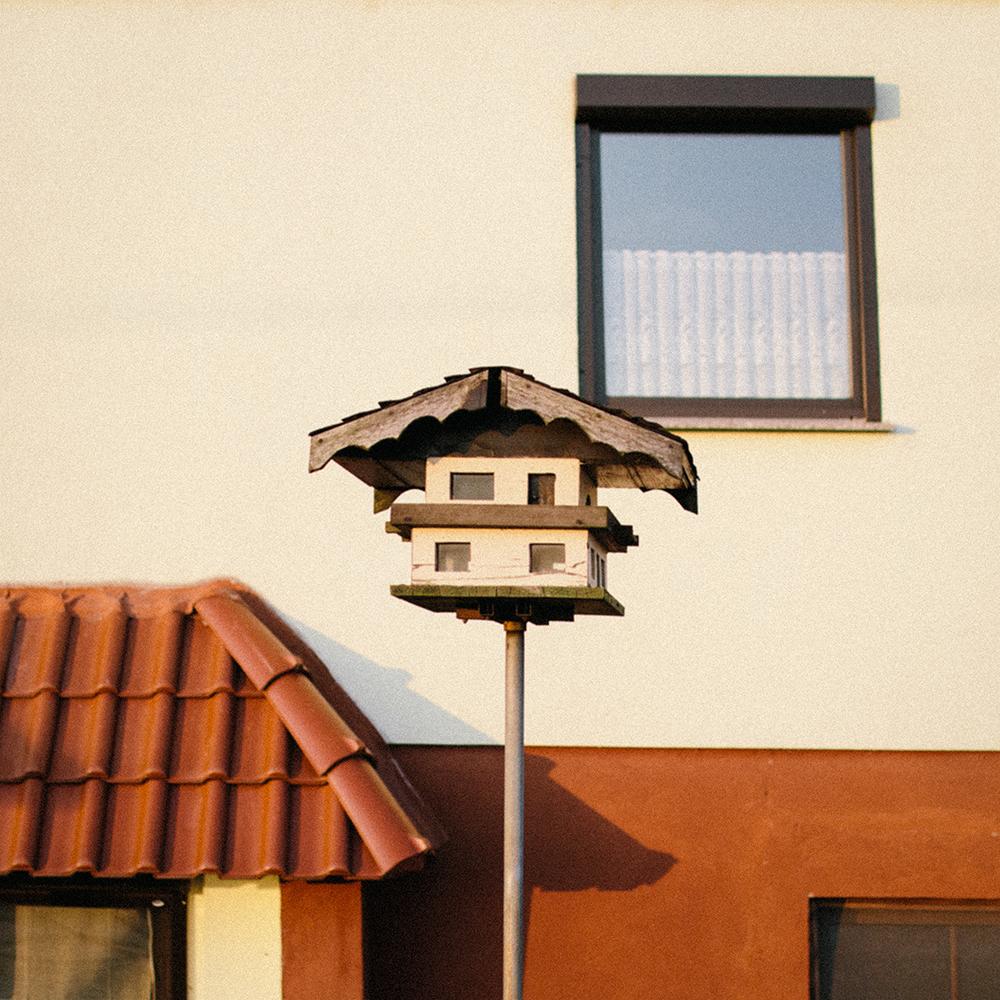 022018 02 birdhouse.png