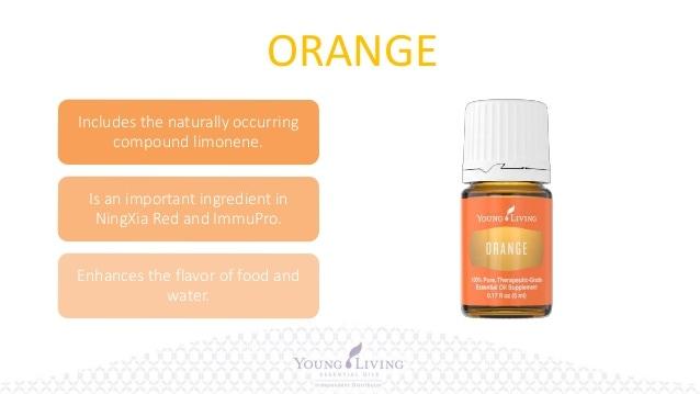 orange-2_orig.jpg