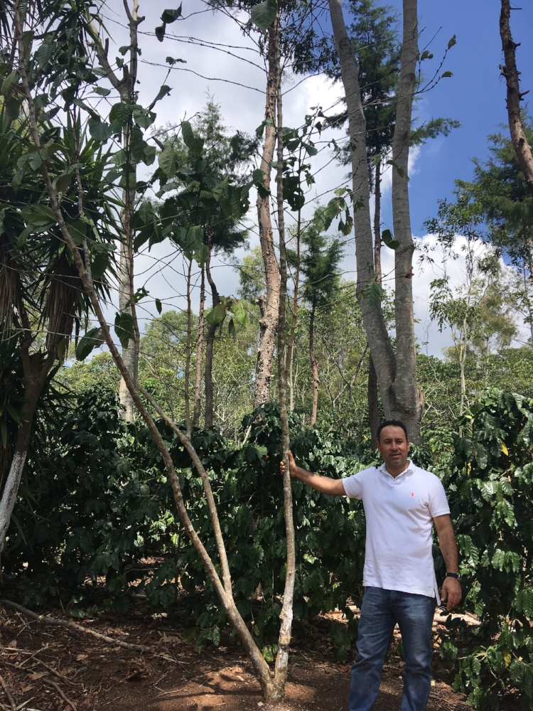 Celeste's husband, Roberto, in the field.