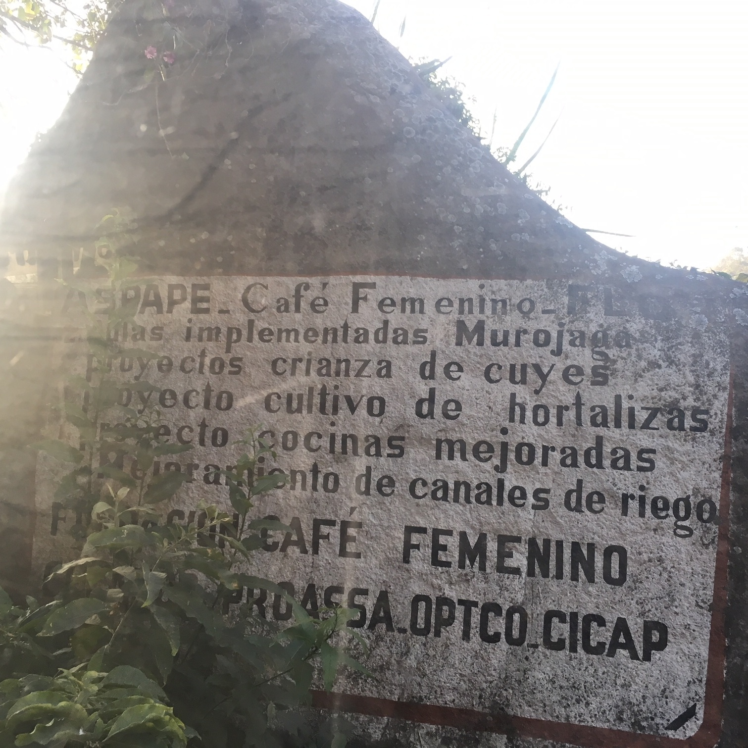 Cafe+Femenino+plaque.jpg