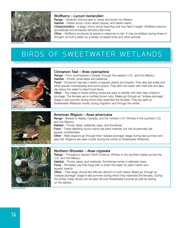 SweetwaterField Guide9-5-17,34-4736.jpg