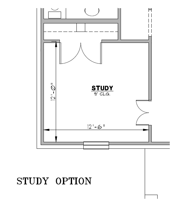 Study Option.png
