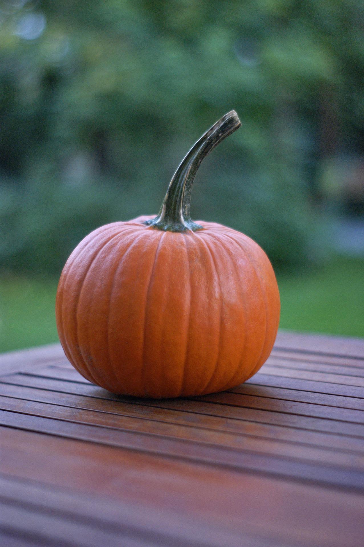 FP_Pumpkin.jpg