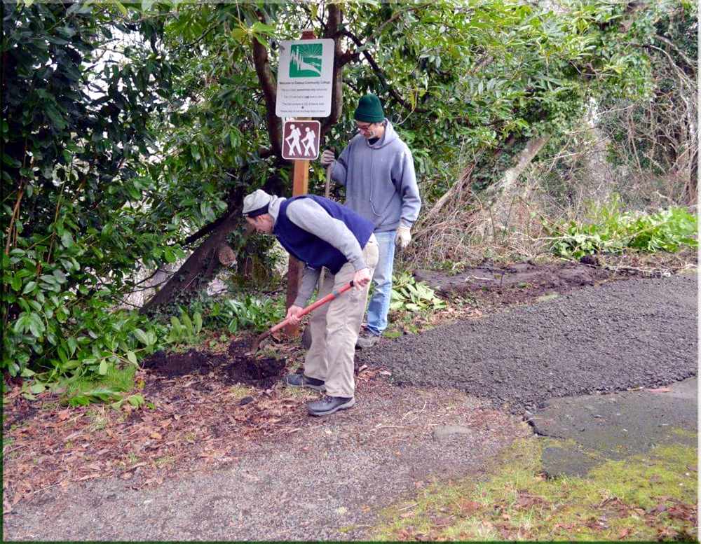 Volunteer and work parties are a great way to exercise and socialize!    Clatsop Community College Trailhead volunteers at work