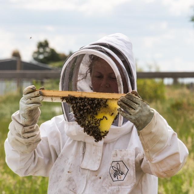 The Good Life Farm Hive Share Program.JPG