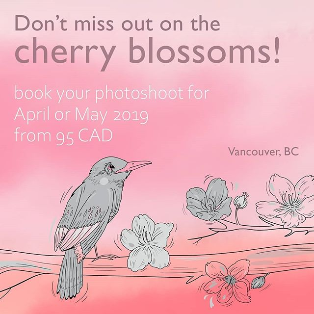 Cherry blossoms will be gone before you know it! Capture these days while they last. 🍃 Book a memorable blossom-filled photoshoot in Vancouver with us in April or May 2019. 🌿 Packages start from only 95 CAD. 🍂 Awesome digital art by the talented @mayimosavar 🌼🍀🌸 #spring #blossoms #springblooms #springblossoms #yvrspring #engagementphotos #beautifulbritishcolumbia  #cherryblossoms #vancouver #stanleypark #springphotography #photographyportfolio #photooftheday #vancityfeature #couplephotoshoot #couple #photoshoot #photography #yvrphotographer #outdoor #outdoorphotography #naturallightphotography #naturallight #woods #beautiful #portraitphotography #portraits #dreamer #blossom #modeling