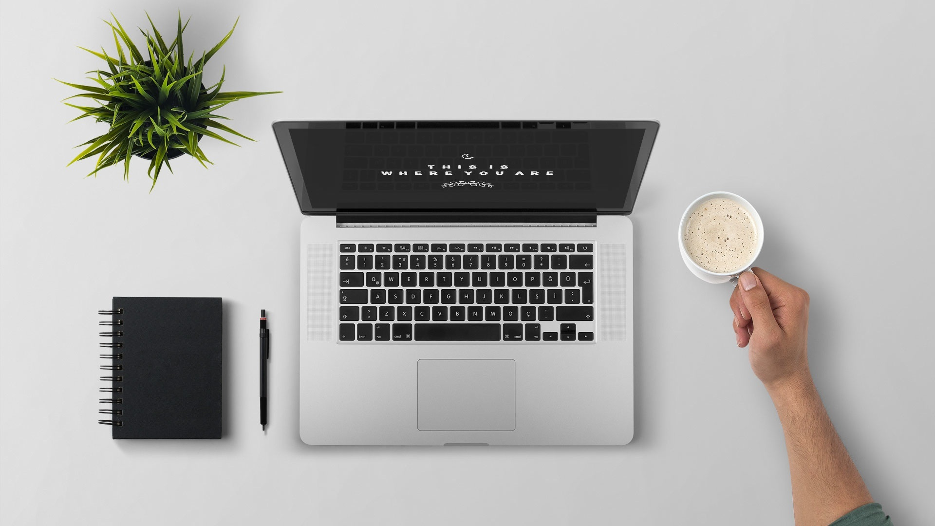 We can build a website specific to your needs or we can also guide you and train you on how you can do it yourself. Squarespace has all the tools for both beginners and advanced users so no task is too hard.