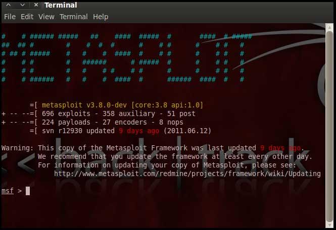 pentesting-metasploit-screen3_big.jpg