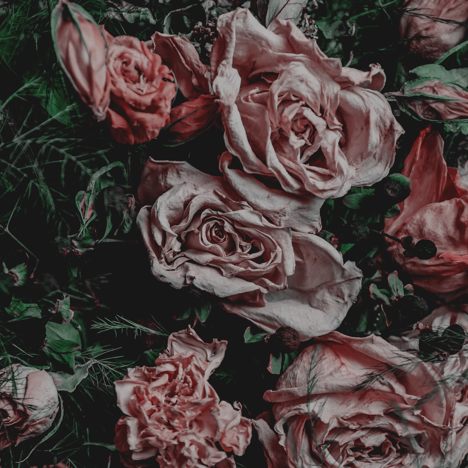 Green Red Moody Florals by KAESPO 002.jpg